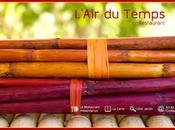site pour L'air Temps (Penne d'Agenais)