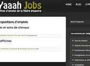 recherche d'emploi dans filière équestre
