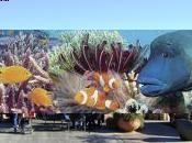meileur monde gardien d'île paradisiaque euros/mois Queensland Australie