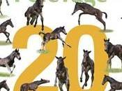 L'annuaire cheval 2009