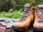 randonneur blessé survit milieu montagnes pendant semaine