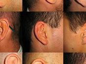 "L'""empreinte digitale"" l'oreille"