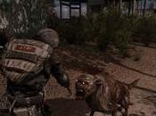 S.T.A.L.K.E.R. Call Pripyat