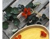 capucine, fleur redécouvrir