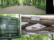 Central Park Colombus Circle