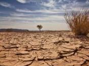 Réchauffement climatique effets déjà observables États-Unis