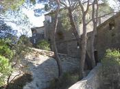 Galilée Darwin Saumane Vaucluse juin