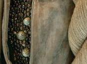 vitrine Hermès l'été 2009