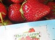 Cueillette fraises Munich