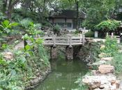 Jardin traditionnel chinois