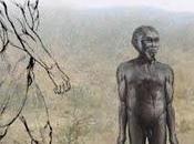 L'Homo floresiensis: premier sortir d'Afrique