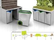 plantes bureau pour valoriser déchets