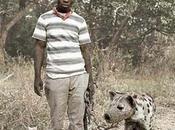 hyènes, Pieter Hugo.