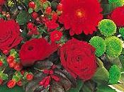 Bouquet Interflora KURIA