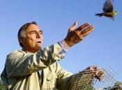 Bougrain-Dubourg dénonce braconnage d'ortolans dans Landes (AFP)
