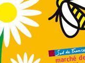 Apimondia 2009 monde apicole face déclin abeilles