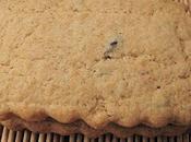 Biscuits sablés pâte haricots rouges (azuki) gingembre
