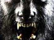 Wolfman, nouveau trailer