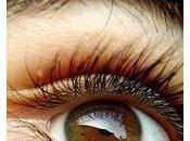 Beauté cils sourcils