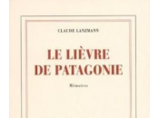 Oublié Goncourt, Claude Lanzmann furieux contre Gallimard