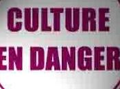 Culture Budget l'inégalité