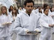 manifestation défenseurs droits animaux Madrid photos)