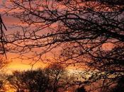 Lever coucher soleil... l'hiver peut être beau