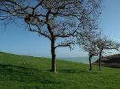 Normandie coeur