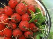 Manger bio, local solidaire Paniers Loire Paris