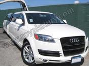 Audi Door Edition
