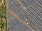Agrinergie, énergie solaire cultures locales