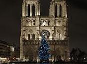 Notre Dame Paris photos sortie