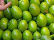 Achar Mangue Verte (Pickle)