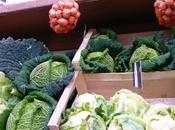Légumes d'hiver tout programme
