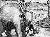 Asie/Thaïlande Exécution condamnés éléphants.