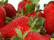 toque fraises hiver