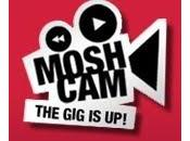 Moshcam Excellent site livestream