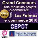 Palmes e-commerce 2010