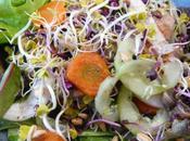 Salade crue cuite plaisir gourmand avril