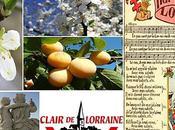 Clair Lorraine