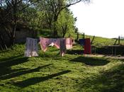 draps (série