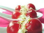 Cuillère apéritive tomate fromage frais brebis sans lait gluten