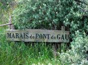 Parc Ornithologique Pont Camargue