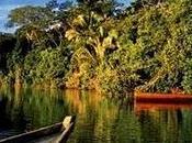 L'AMAZONIE PÉRUVIENNE l'Enfer Vert