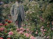 Claude Monet Nymphéas sous l'œil Tigre