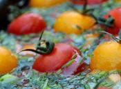 Hure jardinier (terrine petits légumes)