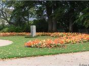 Massifs d'automne Jardin Thabor Rennes