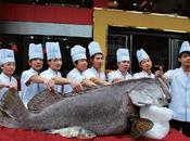 plus gros poisson Chine