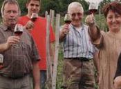 Enfin l'AOC pour Côtes d'Auvergne