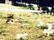 Recueillement émouvant cimetière chrétien Tizi Ouzou